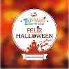 Diseños de calabazas para Halloween