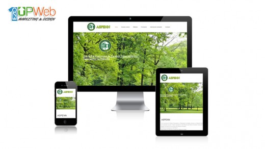 pagina-web-aspenn